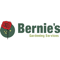 Bernies Logo Digital Marketing PPC SEO Click Return